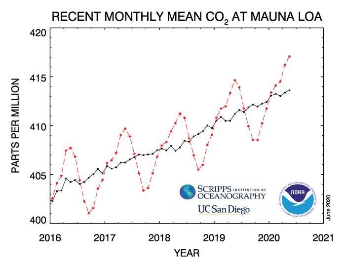 Ici, les enregistrements de ces quatre dernières années à l'observatoire de Mauna Loa (Hawaï). En rouge, les données mensuelles qui montrent bien une variabilité saisonnière naturelle. En noir, la tendance moyenne. © NOAA