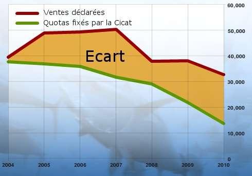 Le rapport du Pew Environment Group met en évidence la différence entre la quantité de thons vendus et les quotas fixés par la CICTA. L'écart correspond vraisemblablement aux captures illicites. © Pew Environment Group 2011