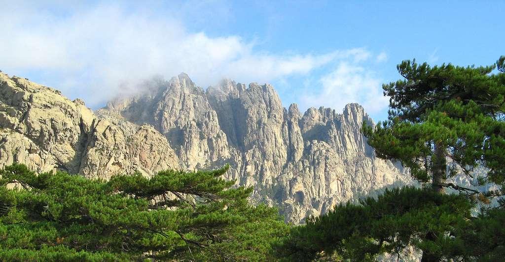 Les Aiguilles de Bavella, vues depuis le Col de Bavella (Corse du Sud). © Patrick Rouzet, Wikimedia commons, GFDL