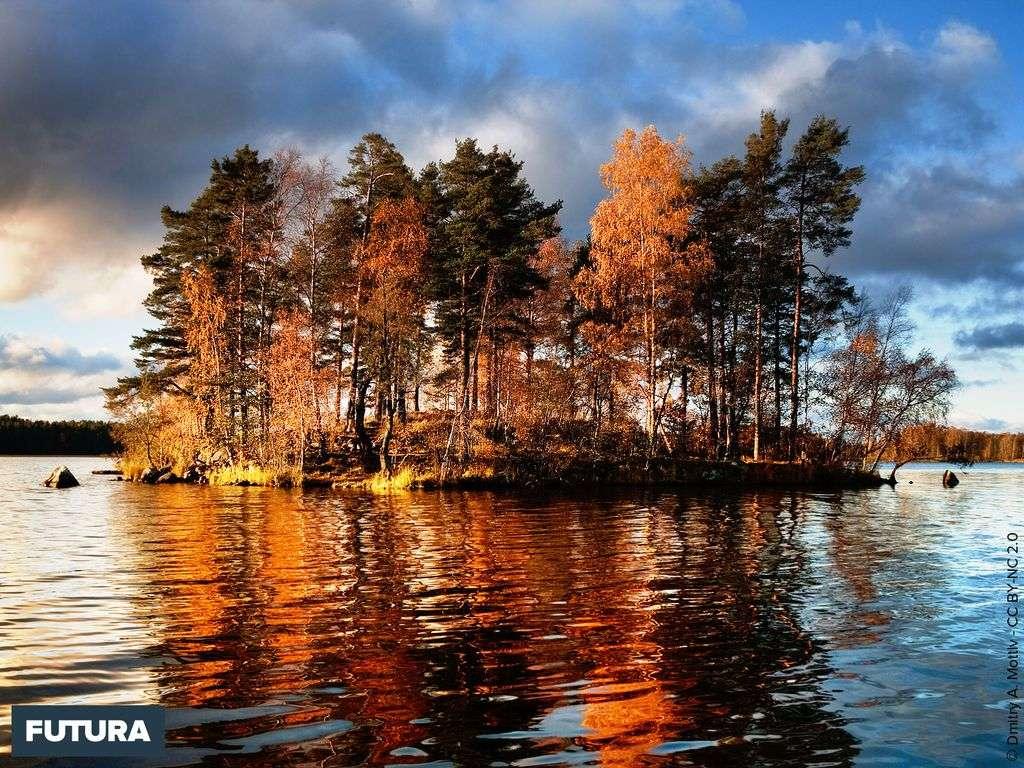 Lac Vuoska en automne