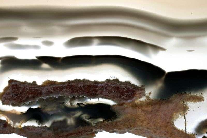 Agate onyx noire à bandes blanches