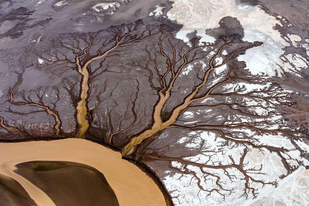 Vue aérienne du delta du Colorado à Baja