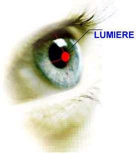 La lumière du jour joue un rôle important dans la synchronisation des rythmes de l'organisme. © DR