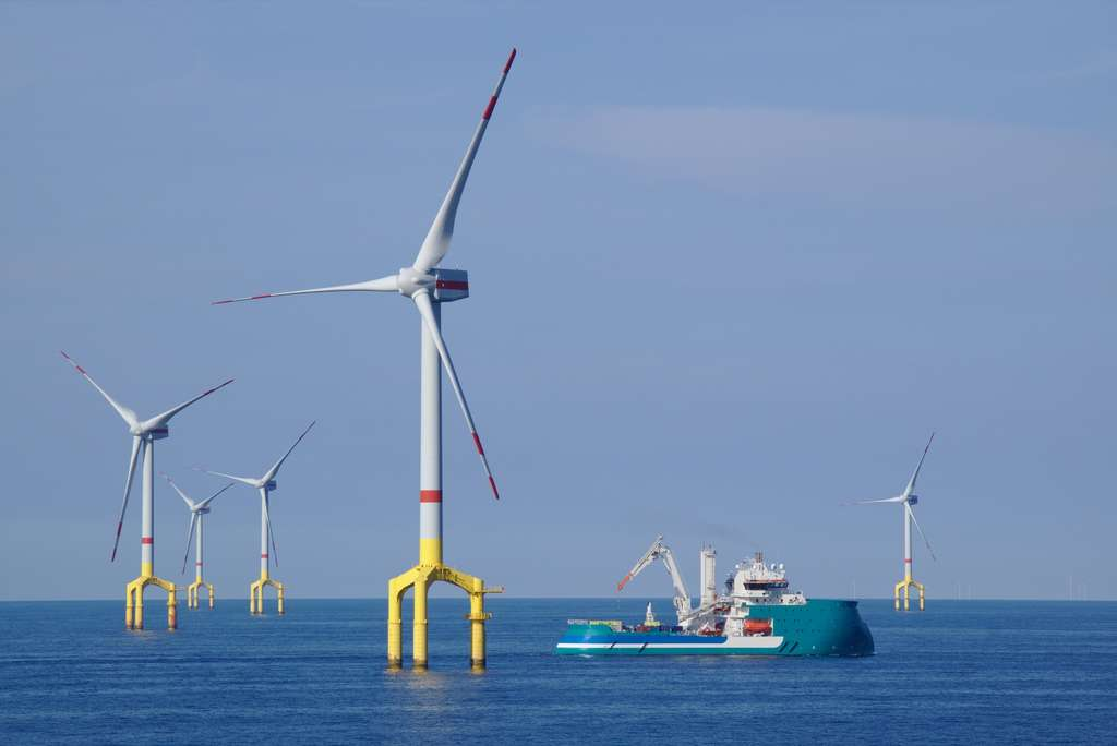 Un parc éolien dit « posé », en mer du Nord. © benoitgrasser, Adobe stock