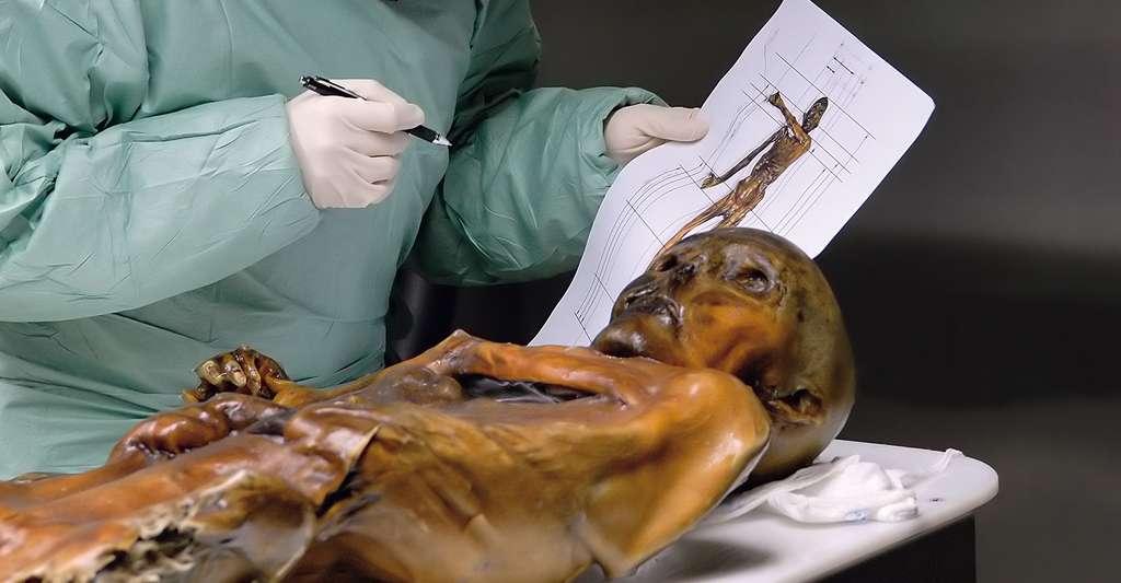 Etude de la momie Ötzi. © South Tyrol Museum of Archaeology/Eurac/Samadelli/Staschitz
