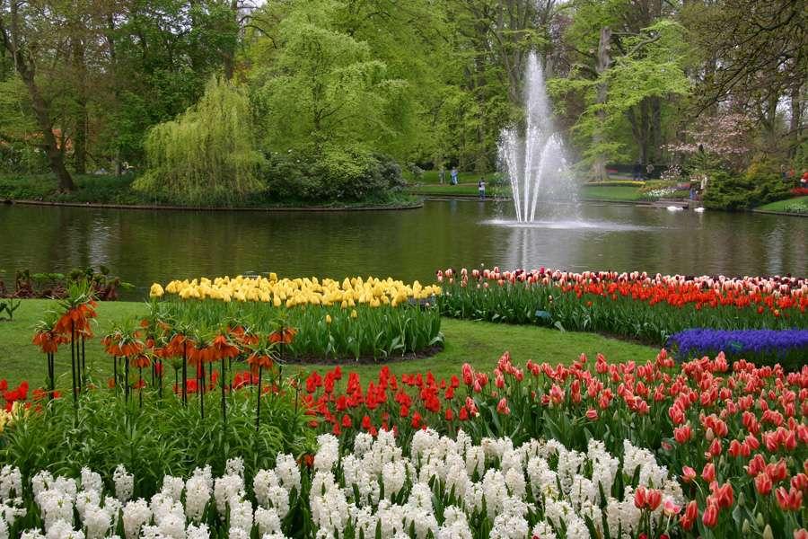 Le parc Keukenhof, aux Pays-Bas, est le plus grand parc floral mondial. ©Alessandro Vecchi, Wikimedia Commons by-sa 3.0