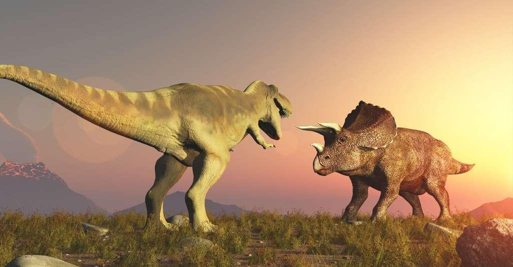 Quel rapport évolutif y a-t-il eu entre dinosaures herbivores et dinosaures carnivores ? Ici, représentation d'un T. rex et d'un tricératops, au Jurassique. © Computer Earth, Shutterstock