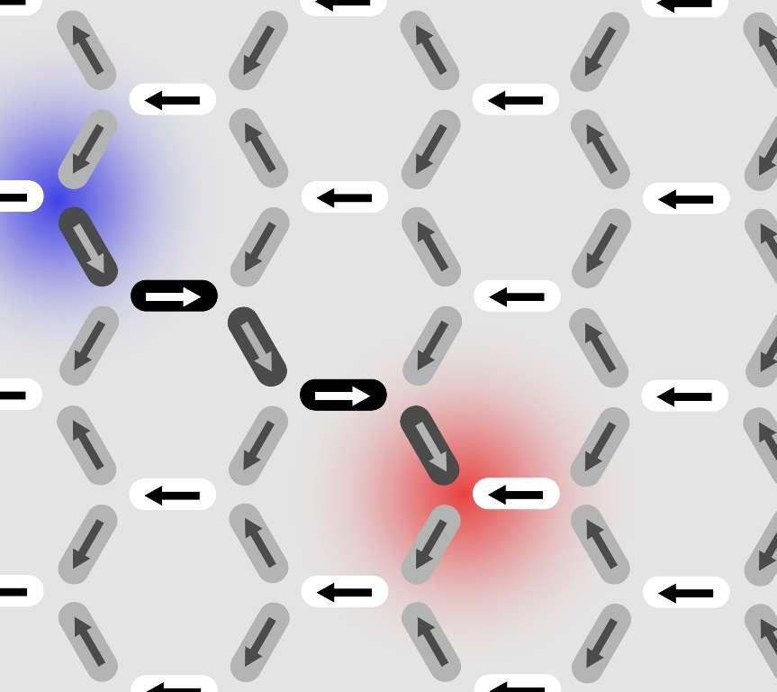 D'autres aimants ont vu leur orientation changer : les monopôles se sont éloignés les uns des autres, mais se sont liés à partir d'aimants retournés par le biais d'une « corde de Dirac ». © PSI/E. Mengotti