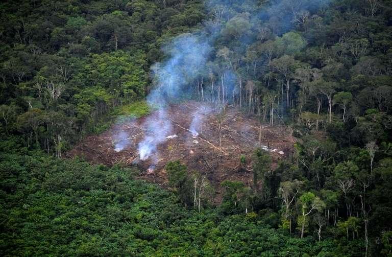 Déforestation illégale dans le parc national de La Macarena, le 3 septembre 2020, en Colombie. © Raul Arboleda, AFP, Archives