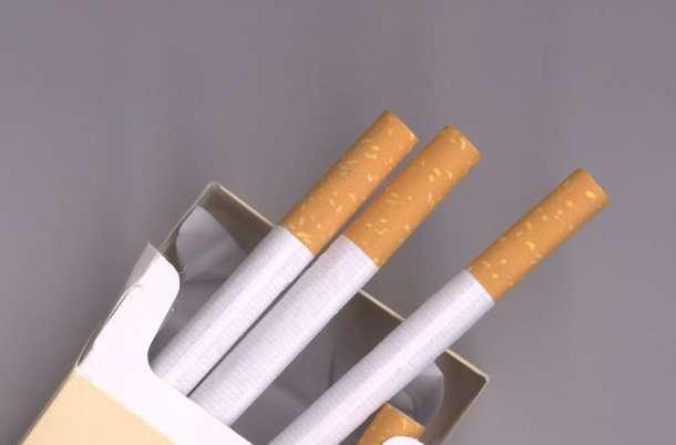 Pour visualiser l'état de ses poumons en réalité augmentée, il suffit d'indiquer le nombre de cigarettes fumées par jour et depuis combien de temps. © Solrac gi 2nd, Morguefile