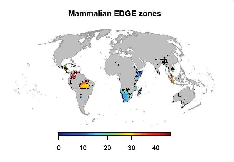 Cartographie mondiale de la richesse en espèces de mammifères qui présentent des traits évolutifs uniques et qui sont menacées d'extinction. © Safi et al., 2013, Plos One