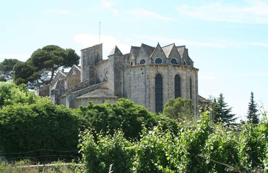 L'abbaye de Vignogoul. © Fagairolles34, CC by-sa 2.5