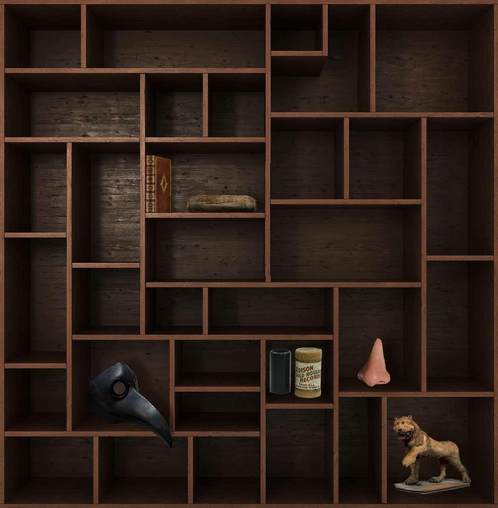 Et de cinq ! Rendez-vous dans deux semaines pour un nouveau chapitre du Cabinet de curiosités. © nosorogua, Adobe Stock