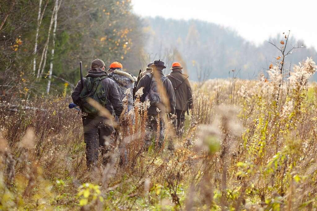 Durant les périodes de chasse, ne vous aventurez pas hors des sentiers balisés et restez groupés. © gsshot, Fotolia