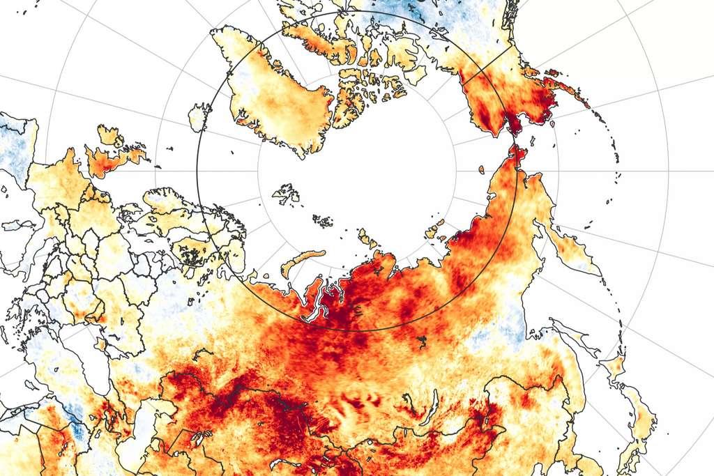 Cette carte publiée par la Nasa révèle les anomalies de températures pour la période du 19 mars au 20 juin 2020. Les zones en rouge sont plus chaudes que la moyenne des années 2003 à 2018, tandis que les rares zones bleues sont plus froides. © Nasa