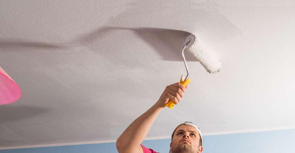 Les peintures pour plafond. © Dusan Kostic, Fotolia