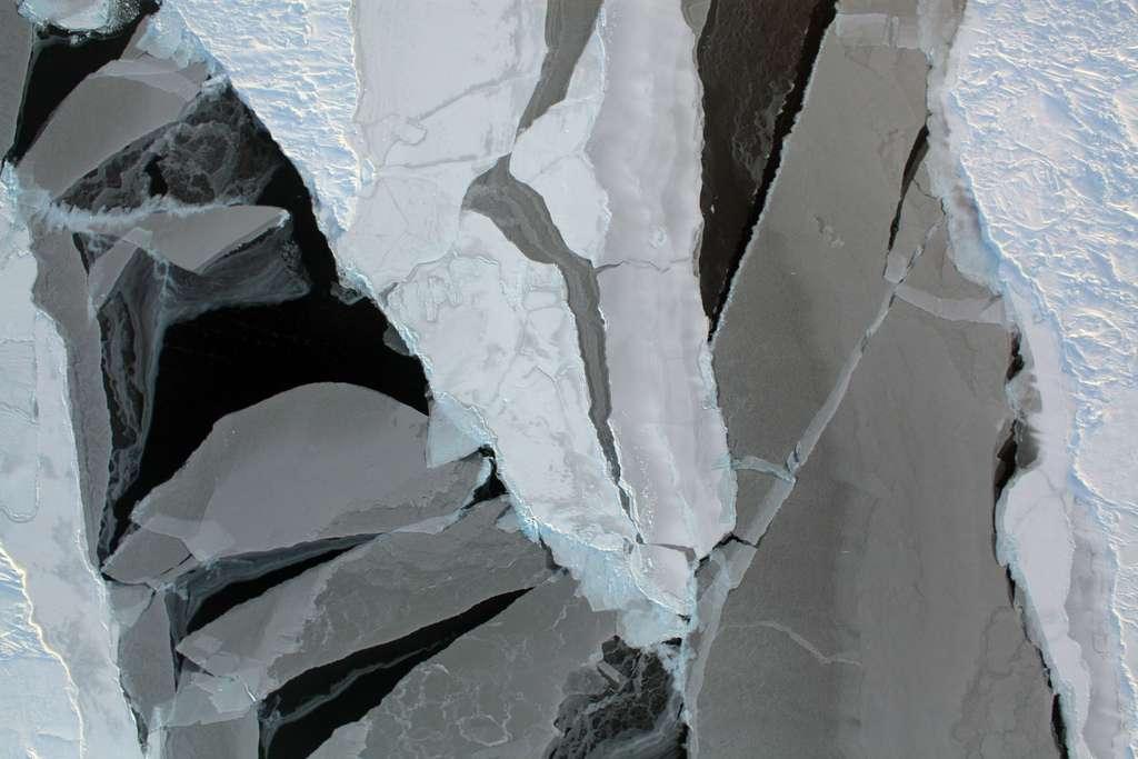 La superficie de la banquise en été tend à diminuer constamment depuis 30 ans. Une tendance similaire s'observe pour son épaisseur, ce qui fragilise encore plus les étendues de glace. Sur cette photographie, le contraste est saisissant entre les morceaux de banquise qui sont épais (en blanc) ou au contraire très minces, voire presque transparents (en gris). © Nasa, Flickr, CC by 2.0
