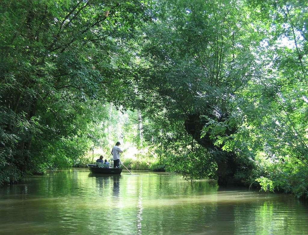 Le tourisme dans les Deux-Sèvres a notamment permis de faire connaître le marais poitevin. © Gilbert Bochenek, Wikimedia, CC by 1.0