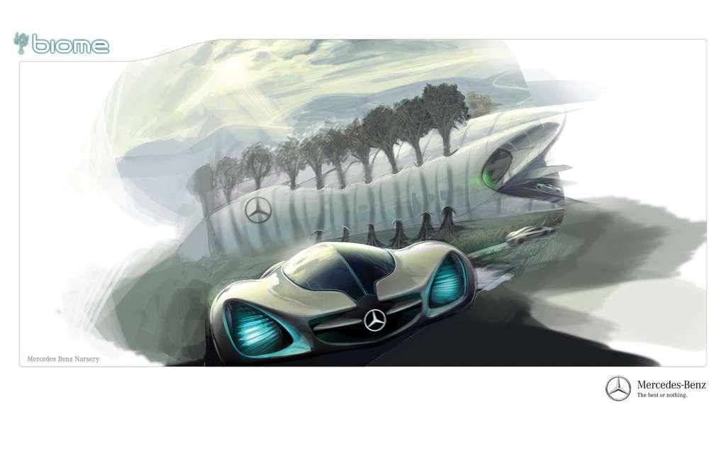 La Mercedes Biome