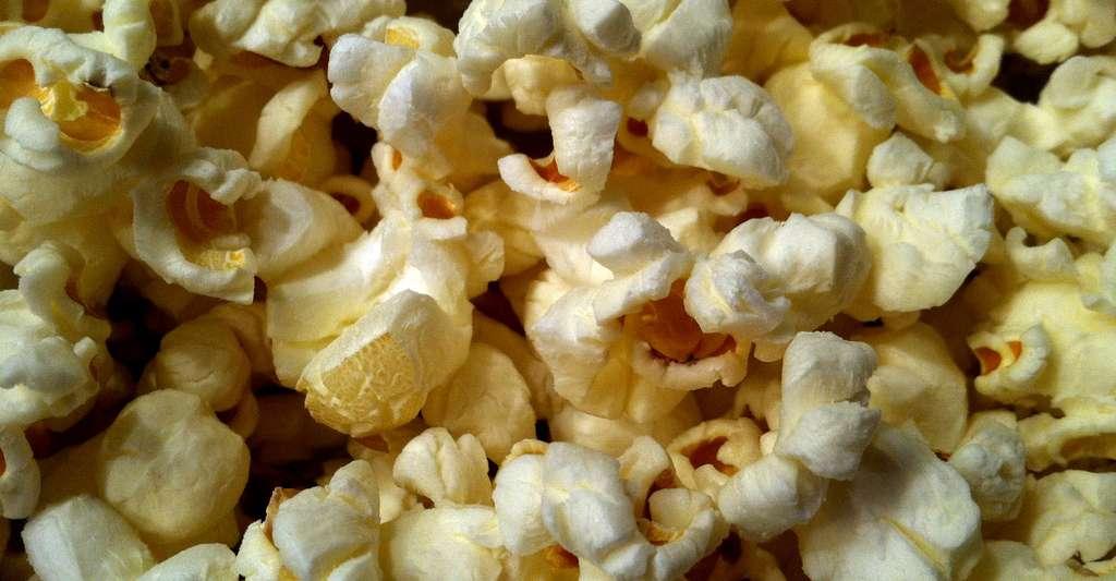 Quelle est l'histoire du maïs ? et l'origine du pop-corn ? © HeatherLion, CC by-sa 3.0