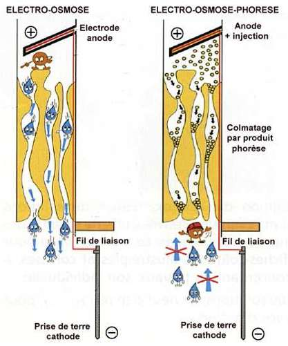 Principe de traitements osmotiques. © legeniecivil.fr
