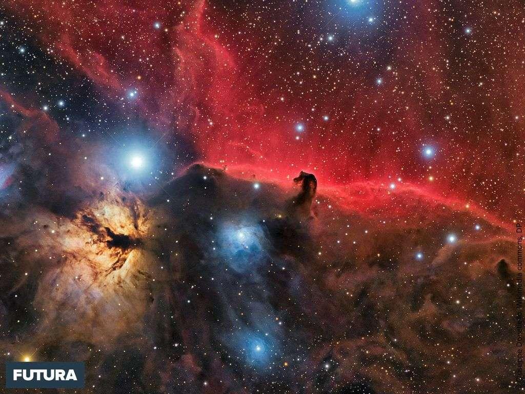 « L'univers est une machine à faire de la conscience » Hubert Reeves