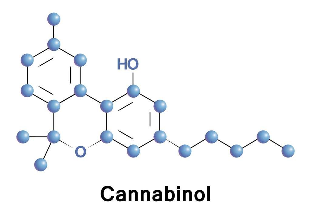 Le cannabinol (CBN) est une molécule psychoactive présente dans le cannabis, tout comme le THC ou le cannabidiol (CBD). © lyricsai, Fotolia