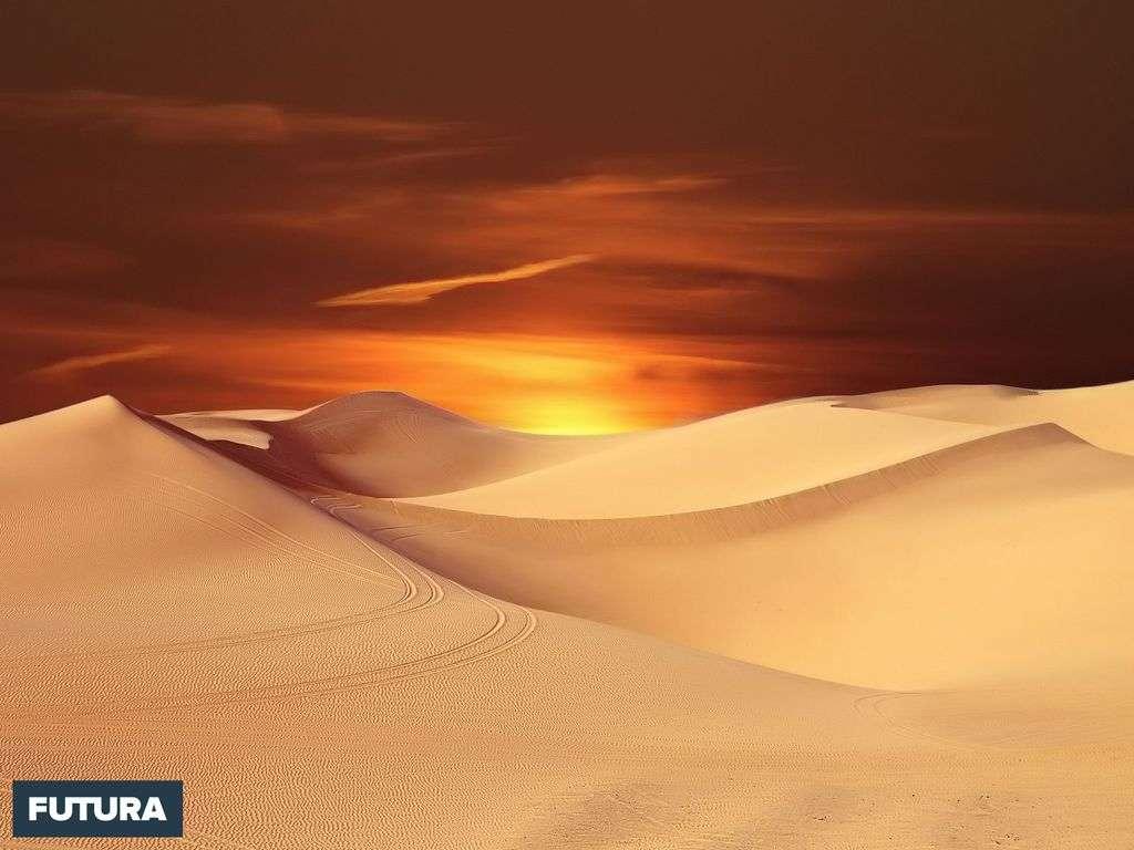 De quel désert est entouré le génie ! Friedrich Nietzsche
