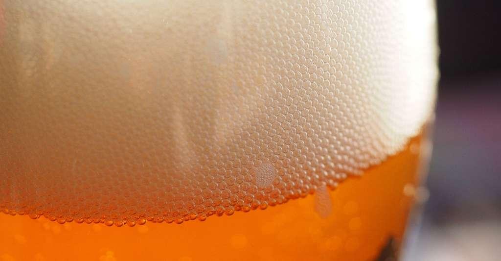Mousse de la bière. © Hans, PIxabay, DP