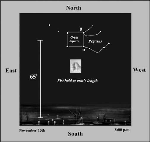 La constellation de Pégase telle qu'elle apparaît sur la voûte céleste. © Gemini Observatory