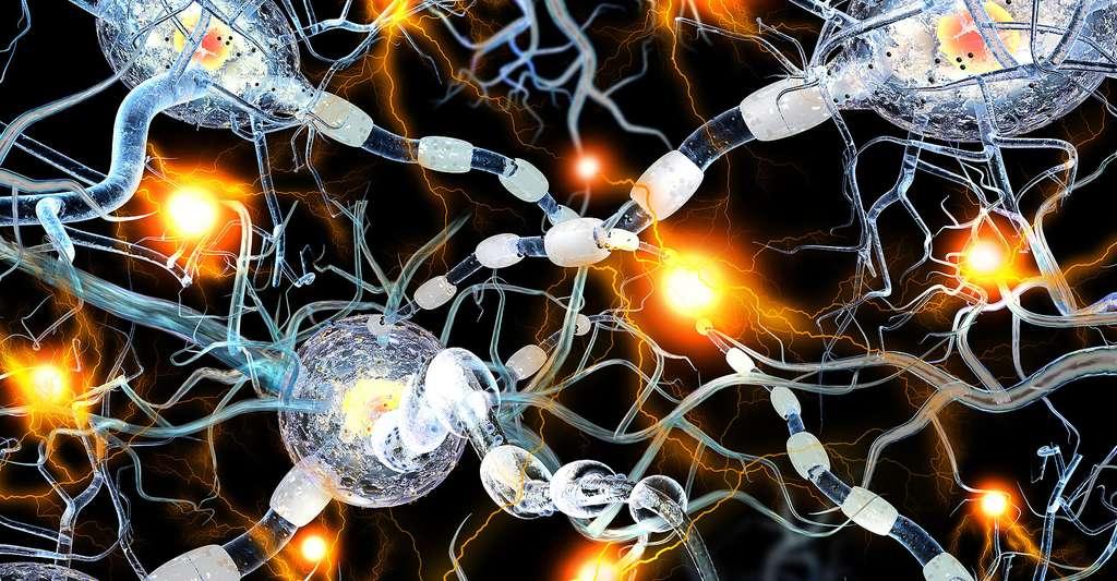 Troubles lors de la maladie d'Alzheimer. © Ralwel, Shutterstock