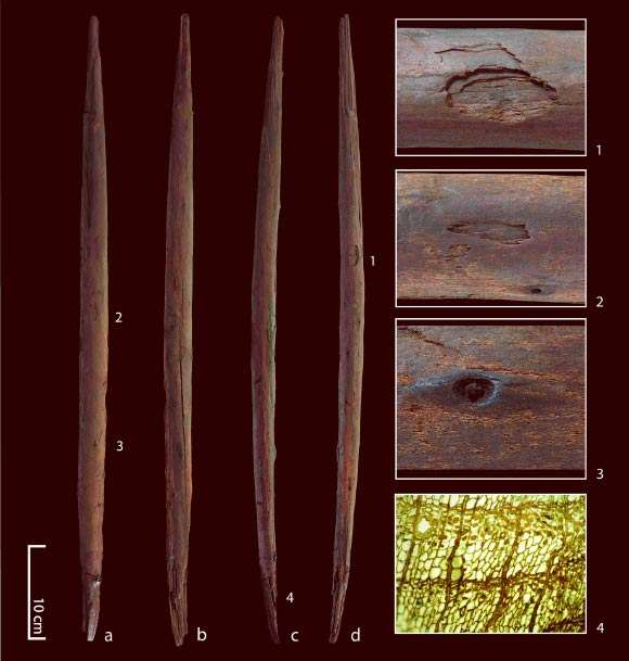 Plusieurs vues d'ensemble et détaillées de la lance de bois mise au jour sur le site de Schöningen 13 II-4. En 4, la structure cellulaire du bois parfaitement conservée. © Conard et al, Nature Ecology & Evolution