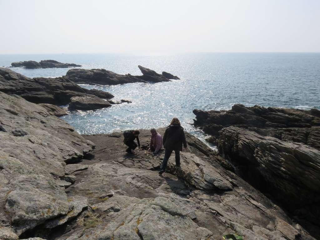 Des scientifiques examinant des roches originaires de la ceinture varisque sur la presqu'île de Quiberon (Bretagne). © Camille Dusséaux, Université de Plymouth