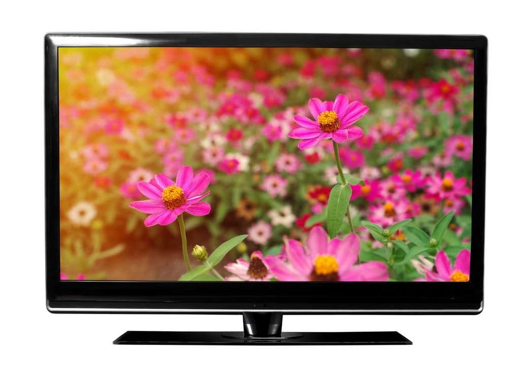 La technologie IPS est actuellement la plus performante dans la catégorie des écrans LCD. Gmstockstudio, Shutterstock