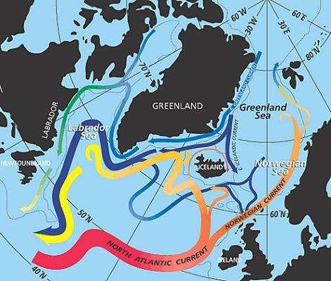Courants océaniques dans l'Atlantique Nord En bleu figurent les courants froids et denses, s'écoulant vers le sud En rouge figurent les courants chauds, qui s'écoulent vers le nord (Crédits : Jack Cook for Ocean and Climate Change Institute, Woods Hole Oceanographic Institution)