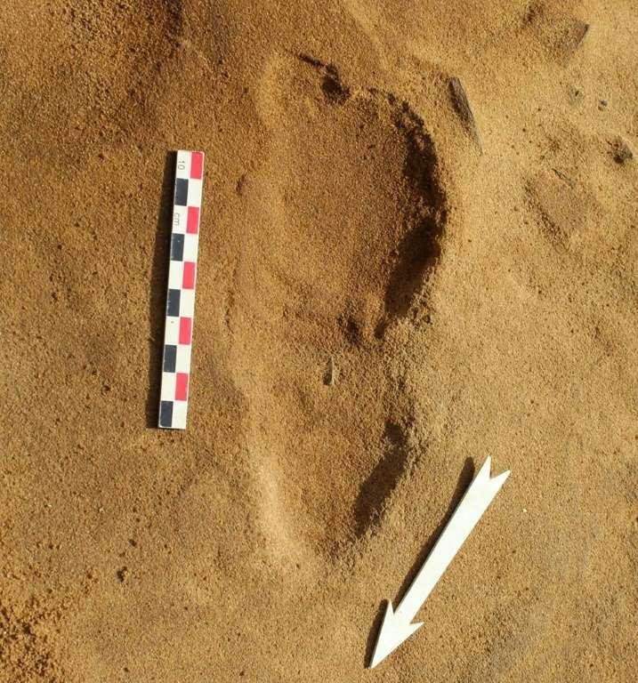 Jamais autant de traces de pas de Néandertaliens n'avaient été découvertes d'un coup. Une trace de pas d'un Néandertalien sur le site du Rozel, en France. © Dominique Cliquet, AFP