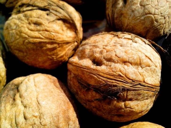 Fruits d'automne par excellence, les noix auraient des bienfaits sur la santé grâce à leurs acides gras, vitamines et minéraux. © DP (CC0)