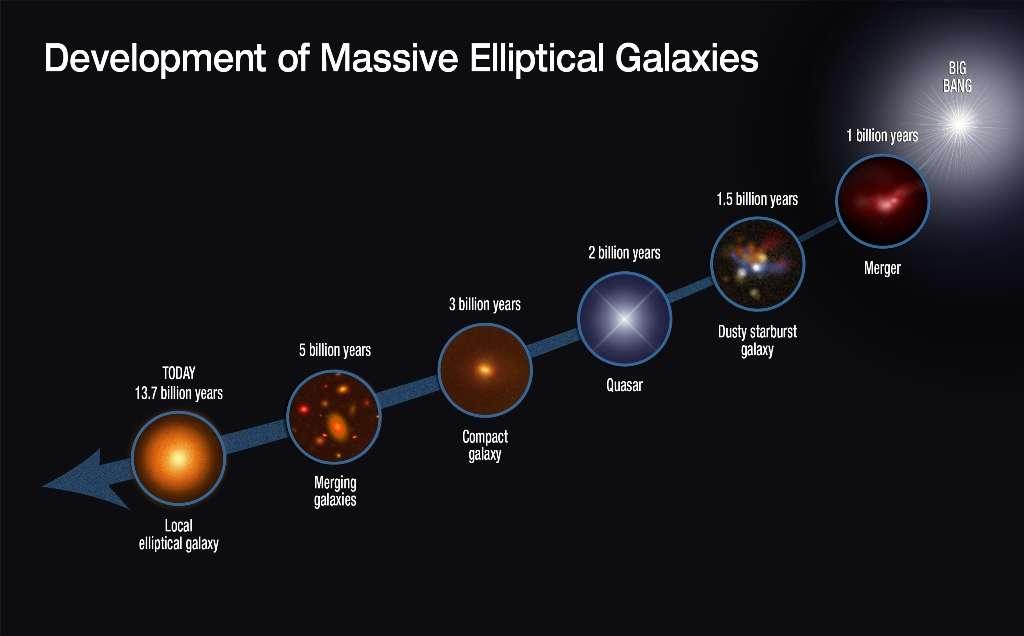 Les astrophysiciens pensent maintenant que la genèse et l'évolution des galaxies elliptiques sont celles qu'indique la séquence d'événements sur ce schéma. Tout commencerait avec la formation de galaxies submillimétriques (SMG) à la suite de fusions (mergers en anglais) de galaxies riches en gaz entre un et deux milliards d'années après le Big Bang. Dans l'objet formé, le gaz chuterait vers le centre, causant un sursaut de formation d'étoiles et peut-être aussi l'allumage d'un quasar. Fortement appauvries en gaz, les SMG deviennent alors des galaxies très compactes ressemblant aux galaxies elliptiques. © Nasa, Esa, Niels Bohr Institute, STScI