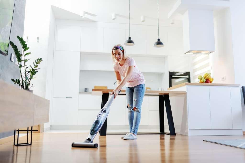 À la différence d'un aspirateur, le nettoyeur vapeur est impitoyable avec les acariens et autres saletés. C'est un outil indispensable dans chaque foyer. © dusanpetkovic1, Adobe Stock