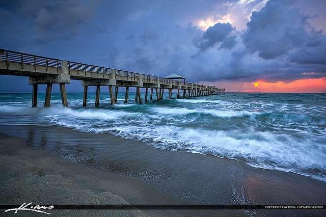 L'Homme serait responsable du déclin des espèces marines. La surpêche, la pollution et le réchauffement climatique sont pointés du doigt. © Kim Seng, Flickr, CC by nc nd 2.0