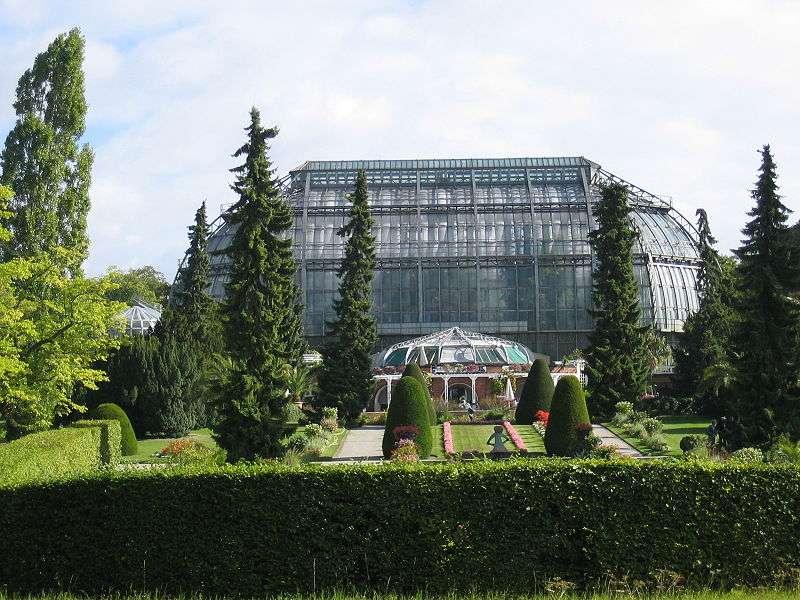 Le jardin botanique de Berlin, en Allemagne