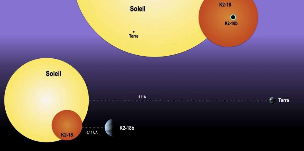 En haut de ce schéma, une comparaison entre les tailles du Soleil et de la Terre d'un côté avec celle de K2-18b et son étoile K2-18. En bas, les distances de ces astres sont mises en perspective mais le rapport avec les tailles n'est pas respecté car une UA vaut environ 150 millions de kilomètres alors que la taille du Soleil est de l'ordre du million de kilomètres. Les planètes ne respectent pas non plus les échelles de taille par rapport à leurs étoiles hôtes. © 2017-2019 LAB
