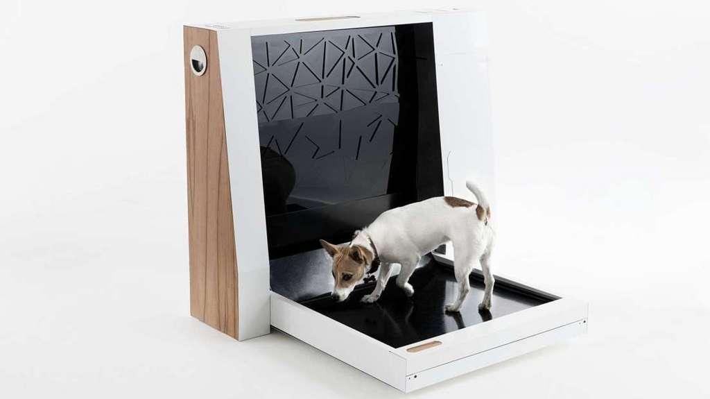 Inubox, les premières toilettes d'intérieur pour chien. © Inubox, Kickstarter