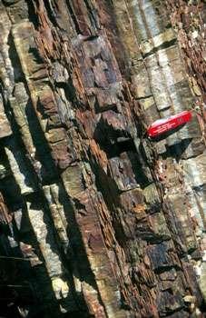 Un affleurement de radiolarites du sultanat d'Oman. Sur le terrain, elles se présentent le plus souvent sous forme de bancs de jaspes de quelques centimètres d'épaisseur (3 - 20) alternant avec des bancs d'argile indurés plus minces (0,2 - 3 cm). © J. Marcoux, Univ. ParisVII.