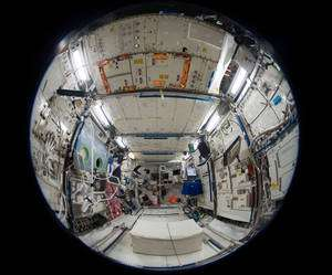 L'intérieur de Columbus, le laboratoire scientifique de l'Esa intégré à la Station spatiale en février 2008. © Nasa