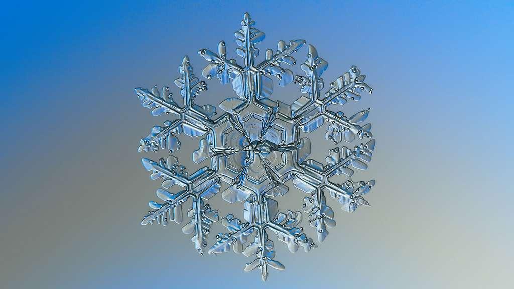 Sept types de flocons de neige