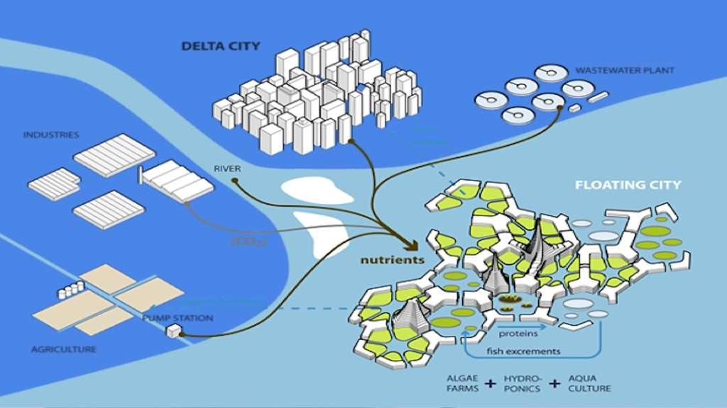 Les polluants déversés en mer, devenus nutriments (nutrients), sont récupérés par la ville flottante et recyclés en biocarburant. Des cultures d'algues et de poissons ou de crustacés nourrissent les habitants. © Institut Seasteading