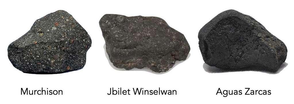Des échantillons de trois météorites chondrites carbonées – Murchison, Jbilet Winselwan et Aguas Zarcas – ont été analysés dans les expériences de dégazage exposées dans l'article de Nature Astronomy. © M. Thompson