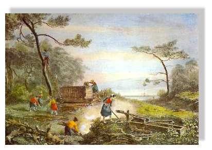 """Les résiniers au 18ème siècle - Vieille gravure du 18ème siècle illustrant le travail des résiniers en forêt de Gascogne. (on peut remarquer sur la gauche un résinier perché sur un """"pitey"""") © Claude Courau - Collection privée - Tous droits réservés"""