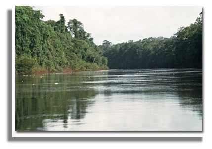 Sur le bord Nord Oriental de l'Amérique du Sud, la Guyane Française occupe une superficie de près de 90 000 km². © IRD